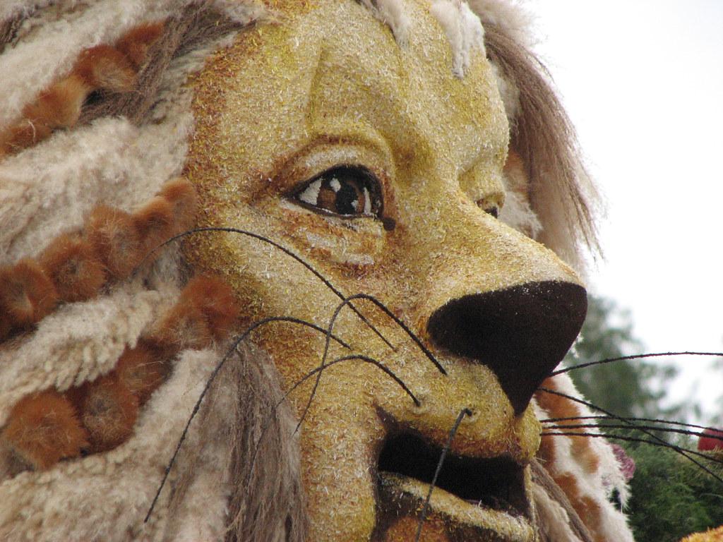 Wizard Of Oz Cowardly Lion Ann N Flickr By Lb Ice Dogs Fan