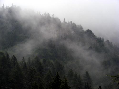 Valbiandino pioggia