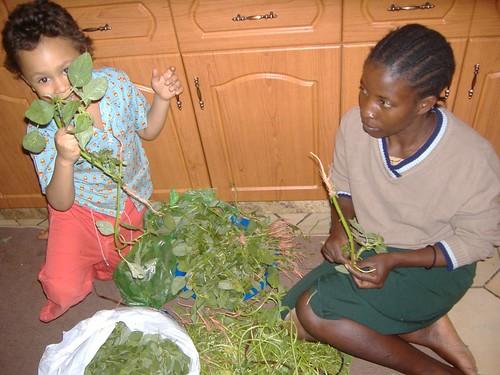 Preparing traditional vegetables
