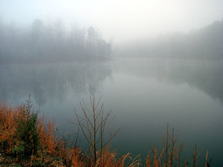 Foggy Lake | by bdaryle