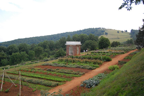 vegetable garden | by Southern Foodways Alliance