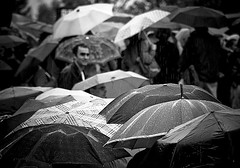 Umbrella Day | by Gregory Bastien