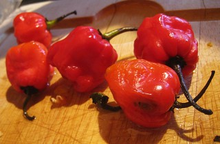 Michele's Scotch Bonnet and Mango Chutney | by Tom Purves