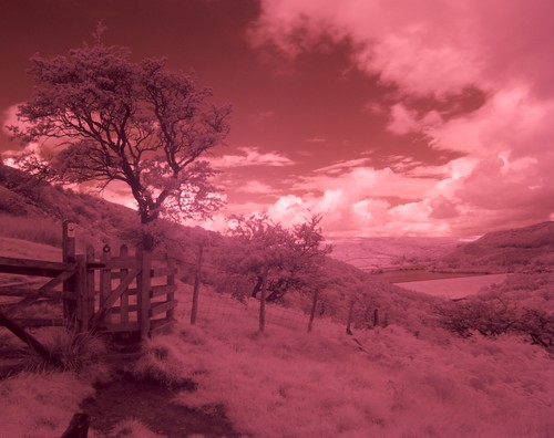 Red Sky in the Afternoon... | by Baernard