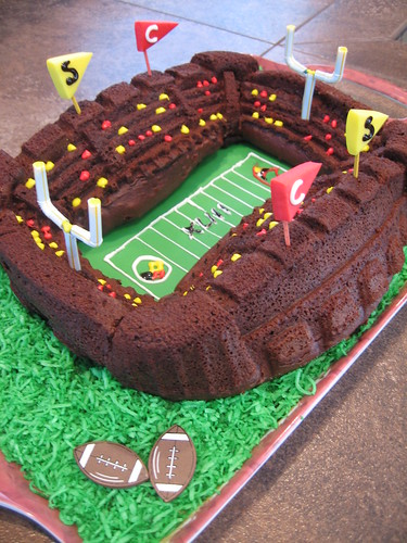 Stadium Cake | by michelleysbelly
