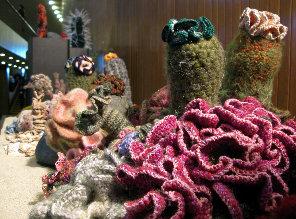 Hyperbolic Crocheted Coral Reef The Poetry Of Math See Bel Flickr