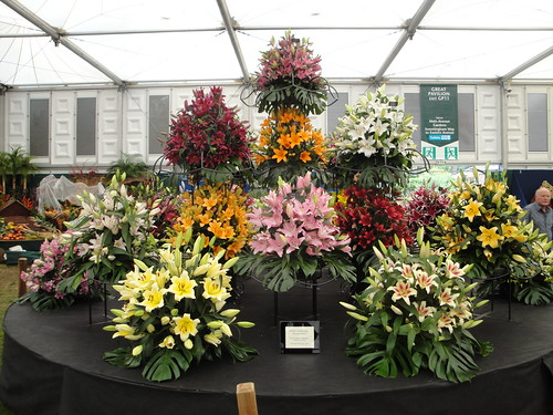 Lily display | by RHR Horticulture