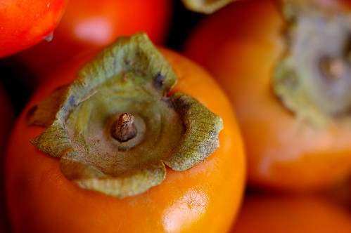 Persimmon | by fortinbras
