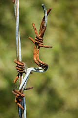 Twisted barbed wire | by James_at_Slack