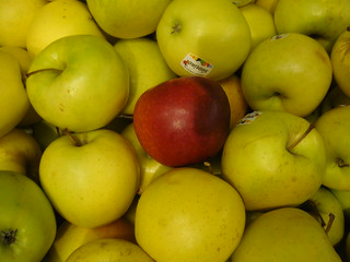 apples | by ollesvensson