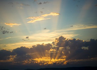 Rays of Sunshine | by T. REX