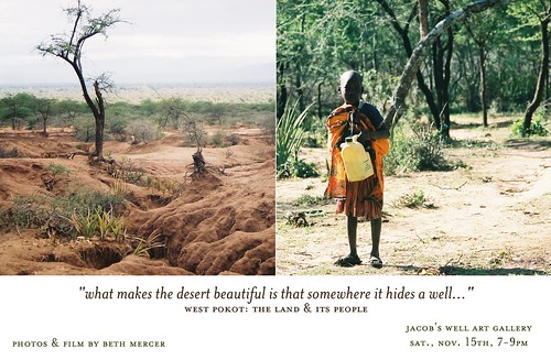 """what makes the desert beautiful..."" 