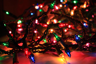 Tangled Christmas lights* | by Lee Ann L.