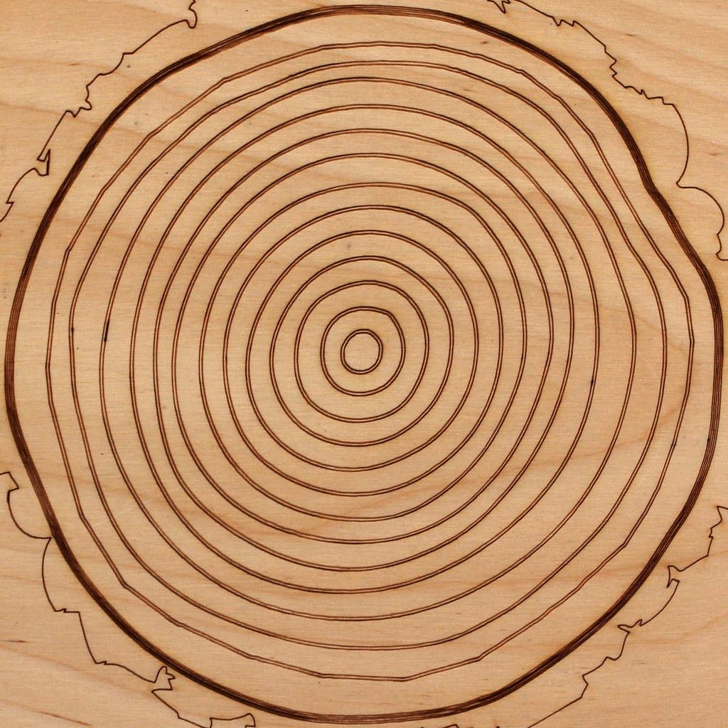 tree ring diagram | Missouri Botanical Garden St Louis, Miss ...
