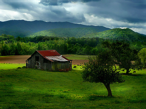 Country Barn | by architect41