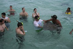 Swimming with the stingrays | by deb_neutze