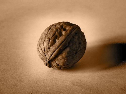Walnut | by Turinboy