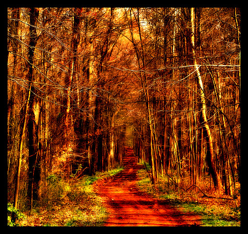 :: the path :: | by ArtByChrysti