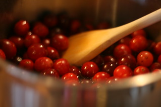thanksgiving cranberry sauce | by prettyinprint