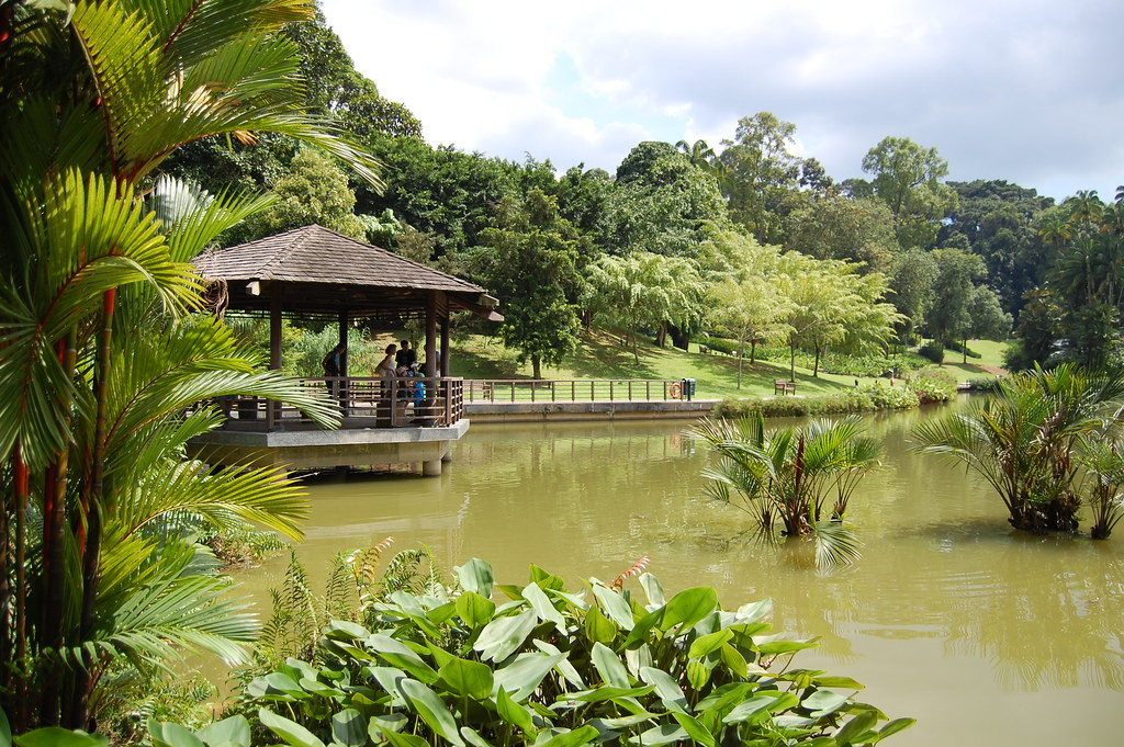 Enjoy In Orchid Park In Singapore Botanical Gardens