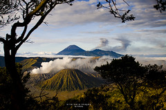 mount bromo.04 | by nilai asia