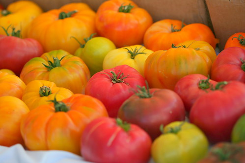 Heirloom Tomatoes | by John-Morgan