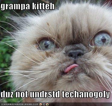 Elderly Cat S Eyes Seem Glazed