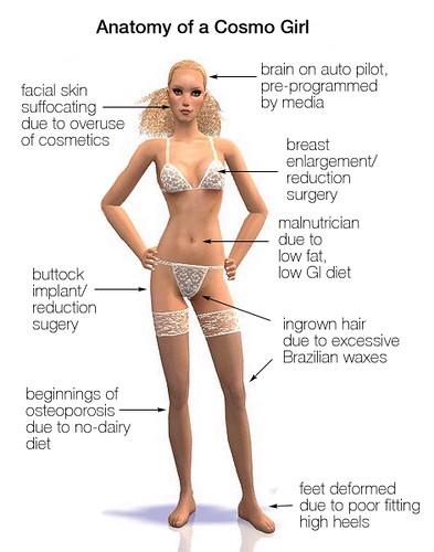 anatomy   Anatomy of a cosmo girl/bimbo   lindalindblom1969   Flickr