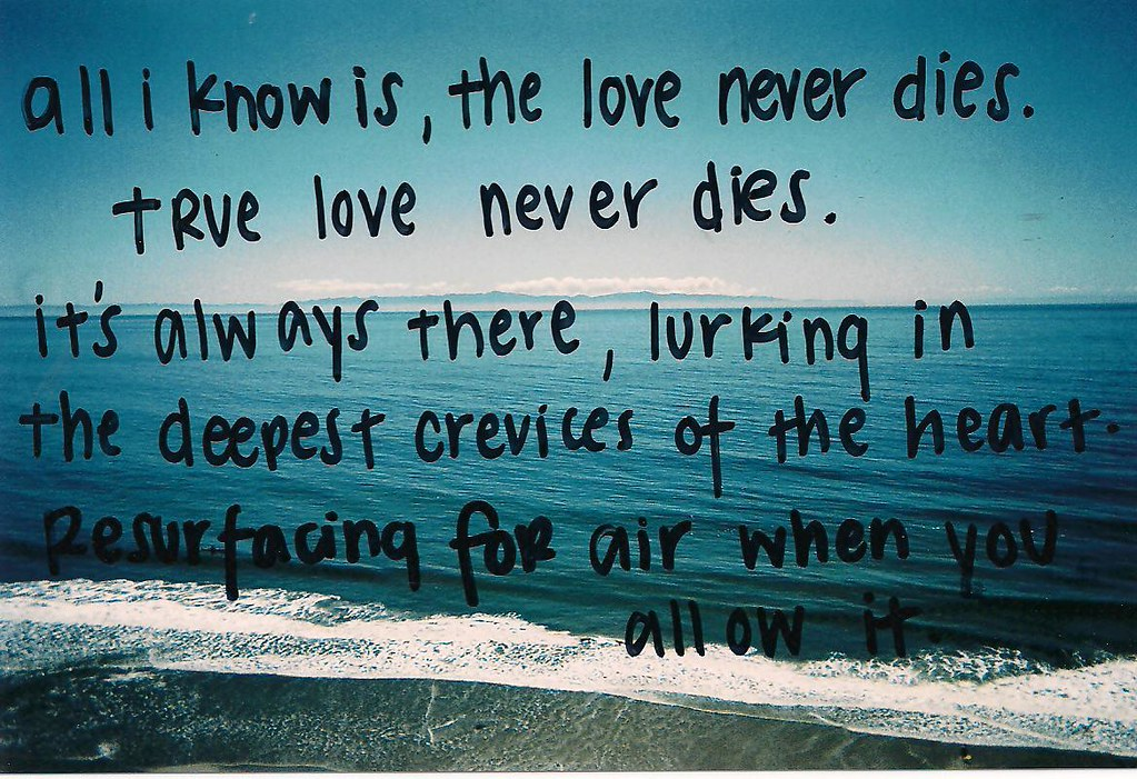True Love Never Dies Journal Excerpt From 8132010 Flickr