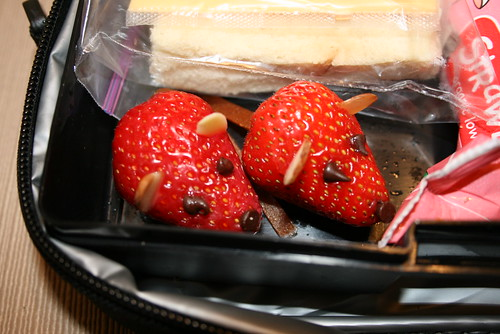 Strawberry Mice | by shiegra