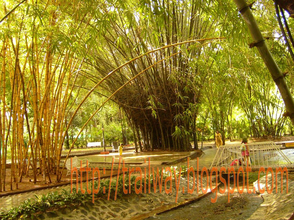 Elders park in Empress Garden copy   Soothing Elders mini pa…   Flickr