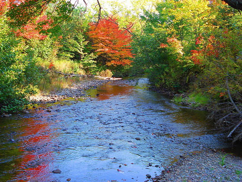 Trout Creek Ontario Hotels