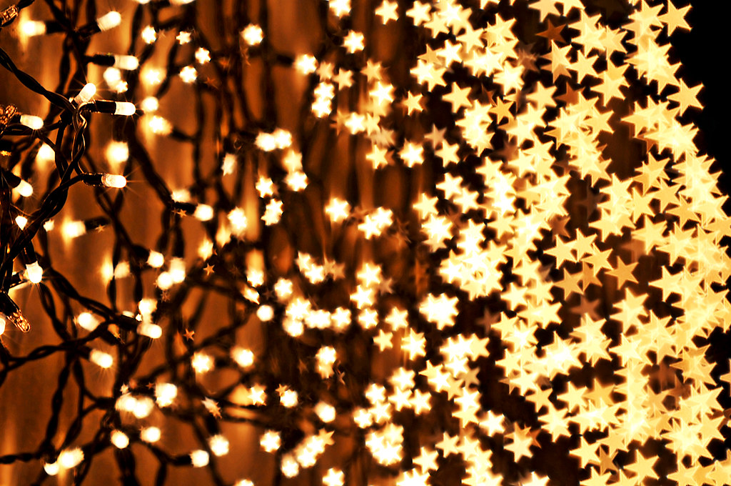 wired stars by tambako the jaguar