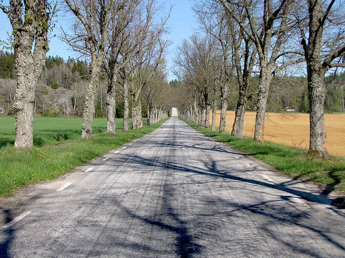 Springtime Road | by Olof S