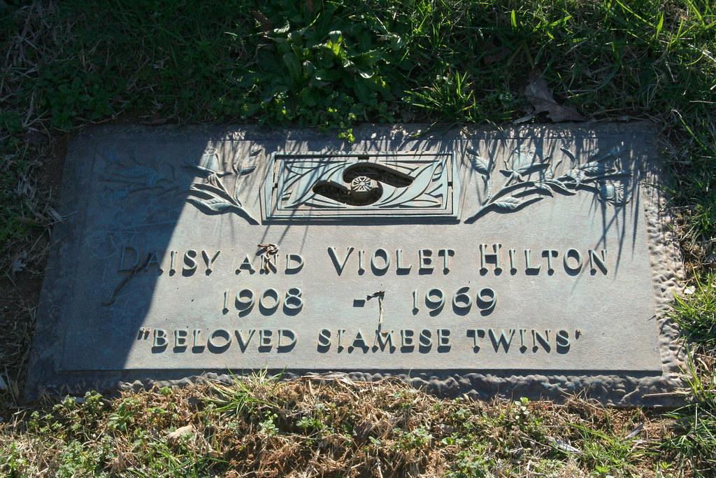 Daisy grave picture 47