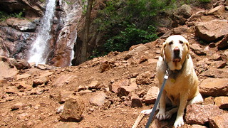 Sadie poses in front of the waterfall | by kafski