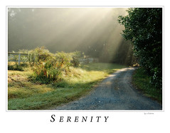 Serenity 2007 | by sukkert