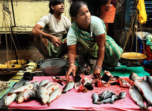 Fish market india its a fast pace morning at the fish for Fish market hours