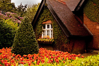 The Gingerbread House | by Steve-h