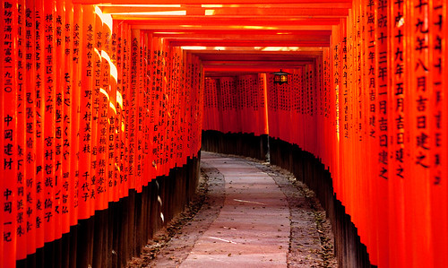 Fushimi Inari taisha, Kyoto, Japan / Japón | by Lost in Japan, by Miguel Michán