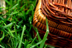 Wicker Picnic Basket Grass 6-1-09 1 | by stevendepolo