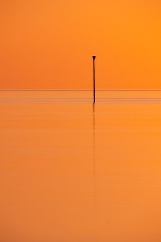 Stick - stuck in orange | by J e n s