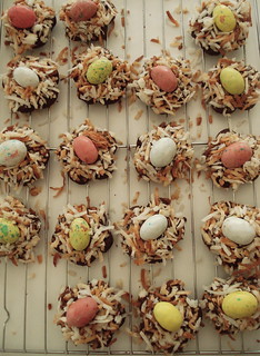 Birds Eye View Nests | by miss.mallory
