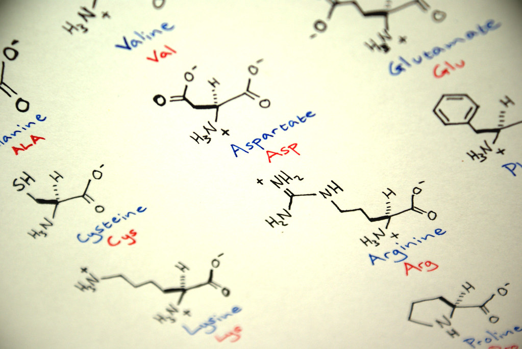 Amino Acids In Zwitterionic Form   Chemical Biology 1, Cardi…   Flickr