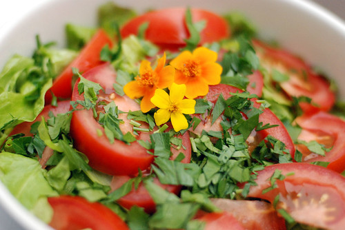 Field Greens with Tomatoes Parsley and Mexican Gems | by swellvegan