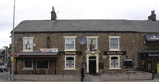 Black Dog Inn Estes Park Co