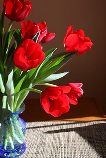 Red Tulips, Blue Vase | by ann j p