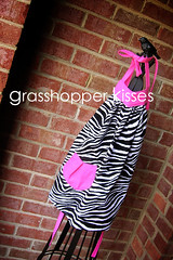 girl's zebra with hot pink fits 2T-5 | by noeplacelikehome