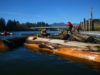 tying up at the dock | by red alder ranch