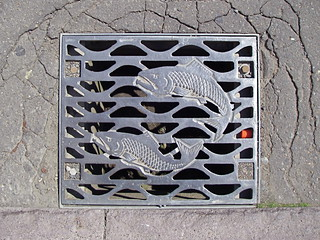 Kushiro sewer grate | by Blue Lotus